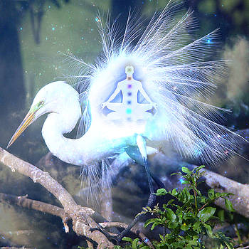 The Egret that Carries the Univsere by Olivia Tatara