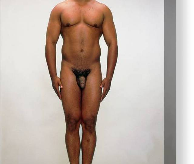 Front View Of A Healthy Naked Man Canvas Print Canvas Art By