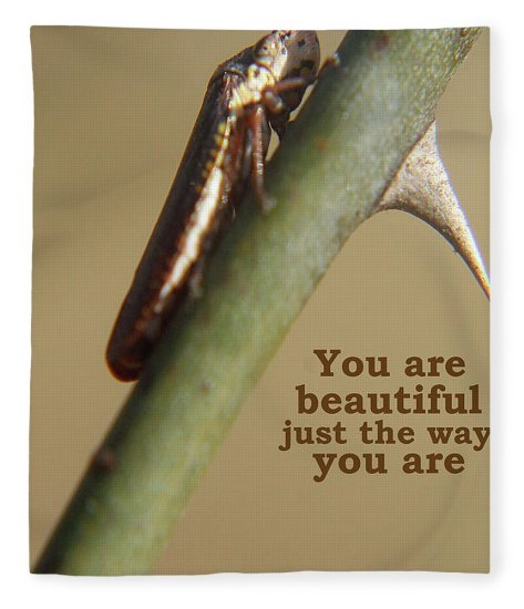 Nature Fleece Blanket featuring the photograph You Are Beautiful by Holly Morris