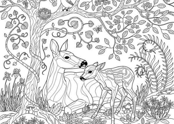 forest coloring page # 4