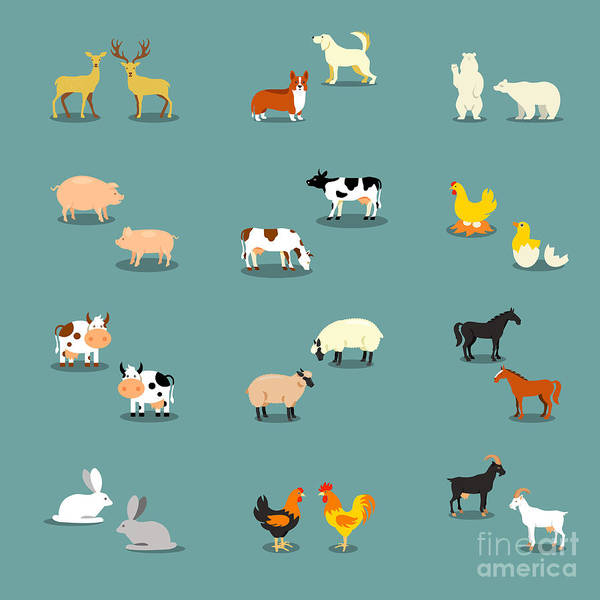 farm animals and pets poster