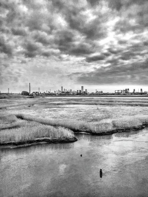 The NYC skyline from the train by Sharon Popek
