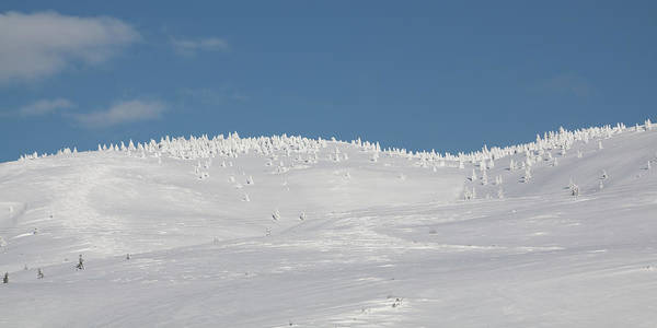 White Hills Art Print featuring the photograph White Hills Covered By Snow by Tatiana Travelways