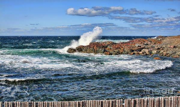 Cape Bonavista Art Print featuring the photograph Cape Bonavista Coastline Fence 6 by Tatiana Travelways