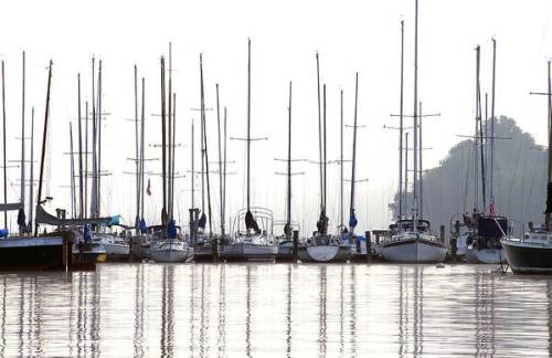 Sailboats sit at the dock, reflected in the quiet water below.