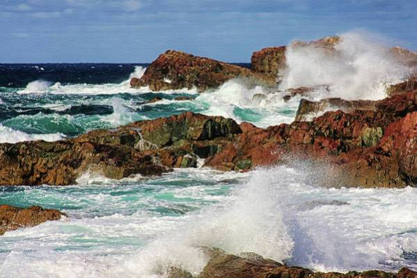 Windy day in Cape Bonavista Newfoundland - by Tatiana Travelways