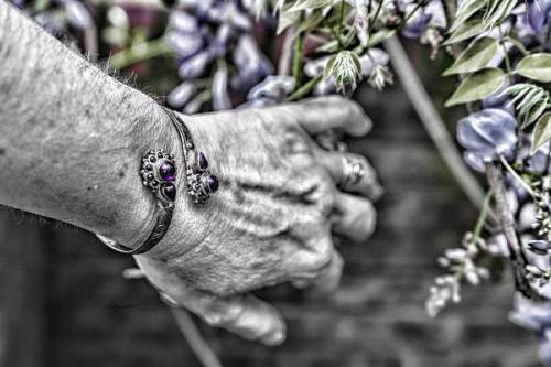 Selective color purple image.