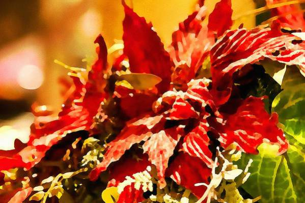 Festive Art Print featuring the photograph Festive Red - Happy Holidays by Tatiana Travelways