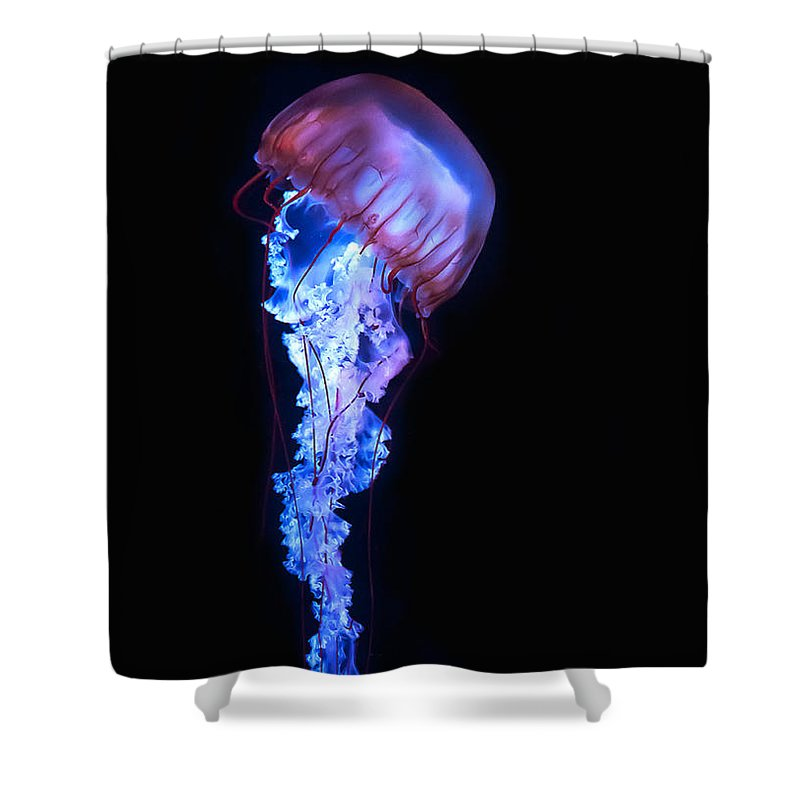blue and purple jellyfish shower curtain