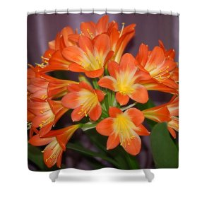 Flowers Shower Curtain featuring the photograph Clivia Blossoms by Nancy Ayanna Wyatt