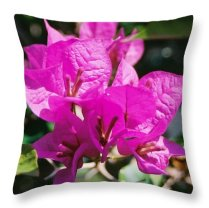 Bouganvilla Throw Pillow featuring the photograph Bouganvilla, Magenta by Nancy Ayanna Wyatt