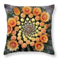 Cactus Throw Pillow featuring the photograph Cactus Mandala by Nancy Ayanna Wyatt