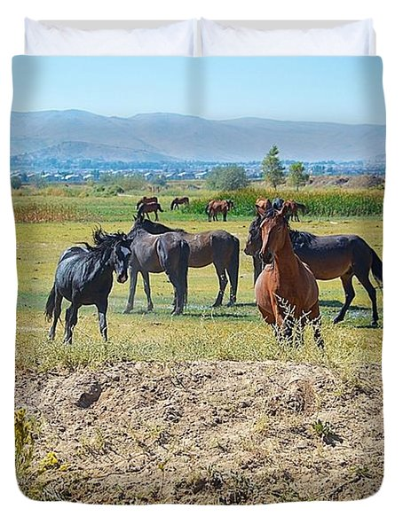 Mustangs Playing  Duvet Cover by Maria Jansson