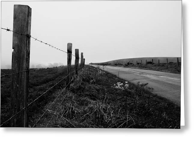 Point Reyes Ca. Photograph By