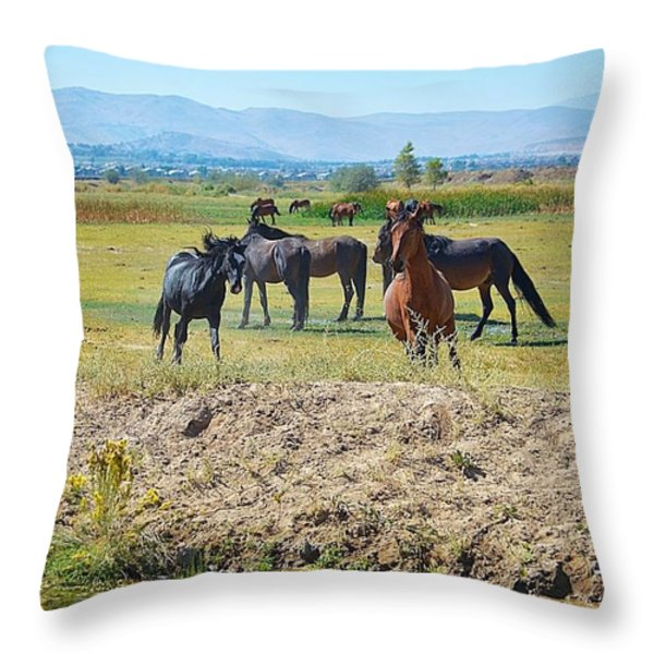 Mustangs Playing  Throw Pillow by Maria Jansson