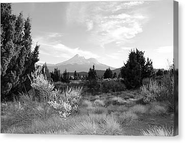 Mount Shasta Canvas Print by Maria Jansson