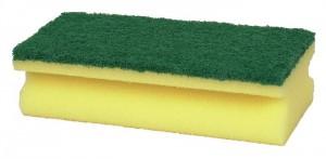 Skuresvamp grov grøn