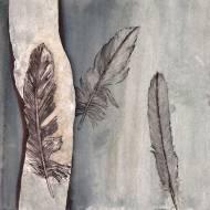 Beach Feathers 3