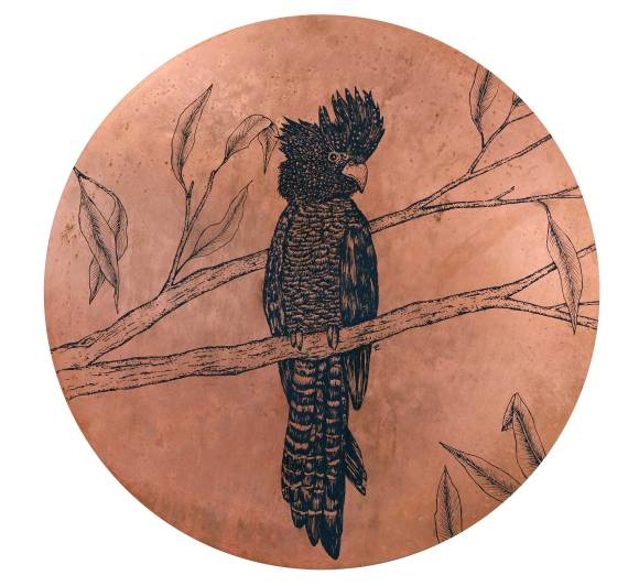 Red-tail-cockatoo-copper-disc