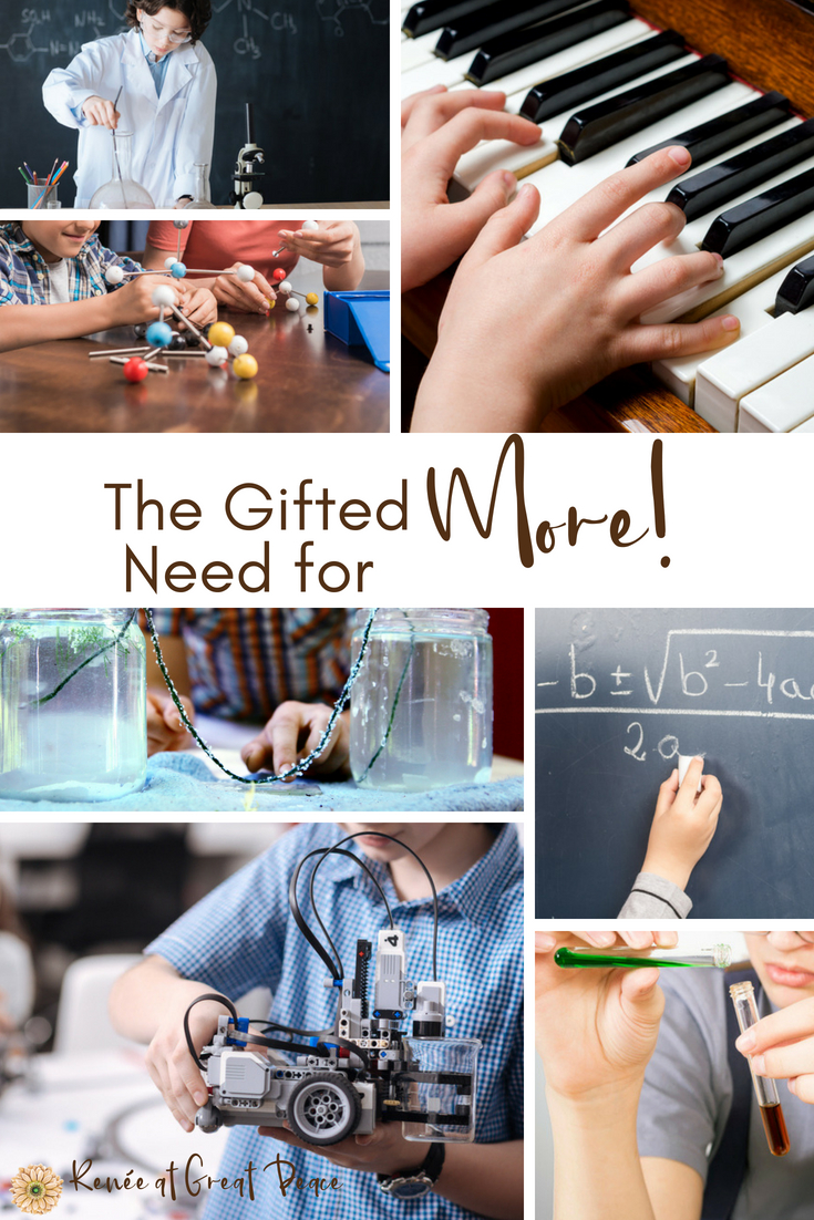 Gifted Homeschooling and the Need for More | Renée at Great Peace #homeschool #gifted #gtchat #ihsnet