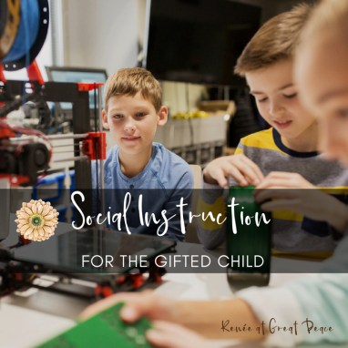 Social Instruction for the Gifted Child   Renée at Great Peace #gtchat #gifted #ihsnet #homeschool