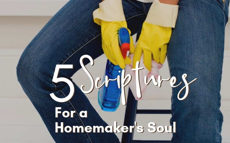 5 Scriptures for a Homemakers Soul   Renée at Great Peace #homemakers #stayathomemoms #workathomemoms #keeperathome #ihsnet