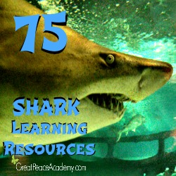 75 Shark Learning Resources at Great Peace Academy