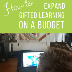 How to Expand Gifted Learning Opportunities on a Budget   GreatPeaceAcademy.com #ihsnet