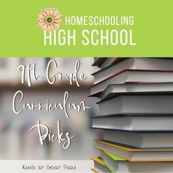 Homeschooling High School 9th Grade Curriculum Picks   Renée at Great Peace #ihsnet #homeschool