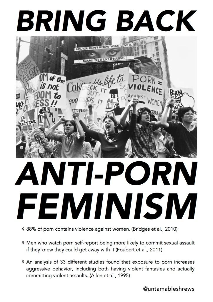 anti porn feminism copy