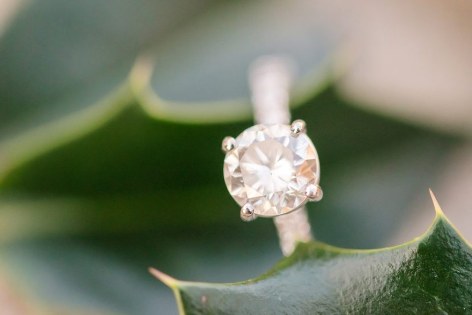 engagement ring on holly photographed by Renee Nicolo Photography