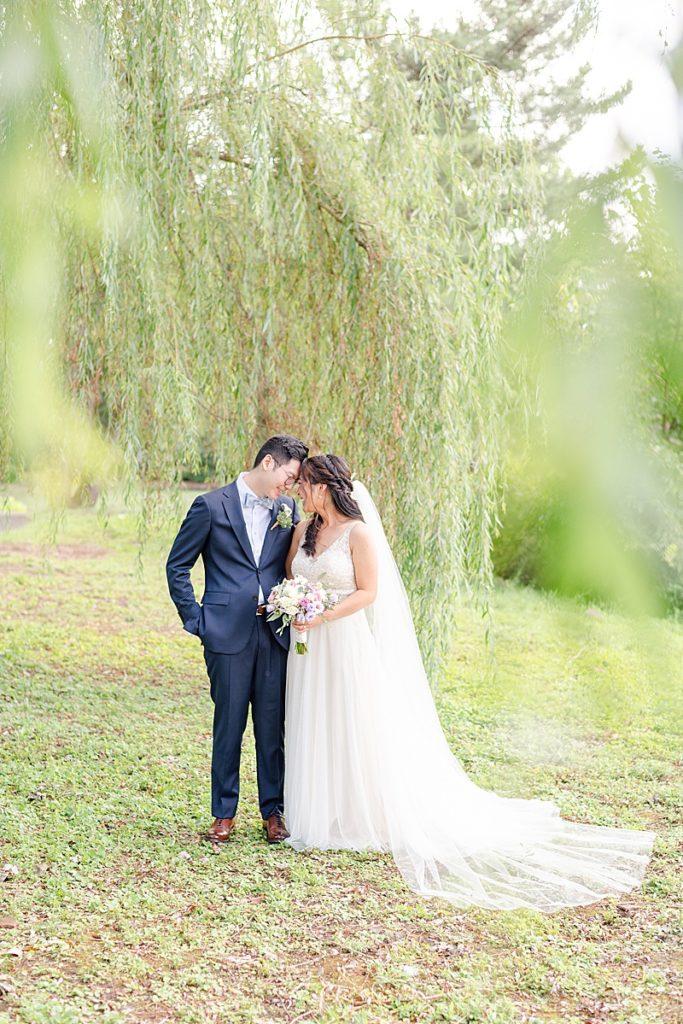 wedding portraits under willow tree