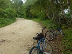 Biking along the coast