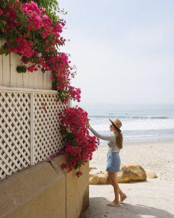 California Road Trip: Golden Mornings & Painted Skies