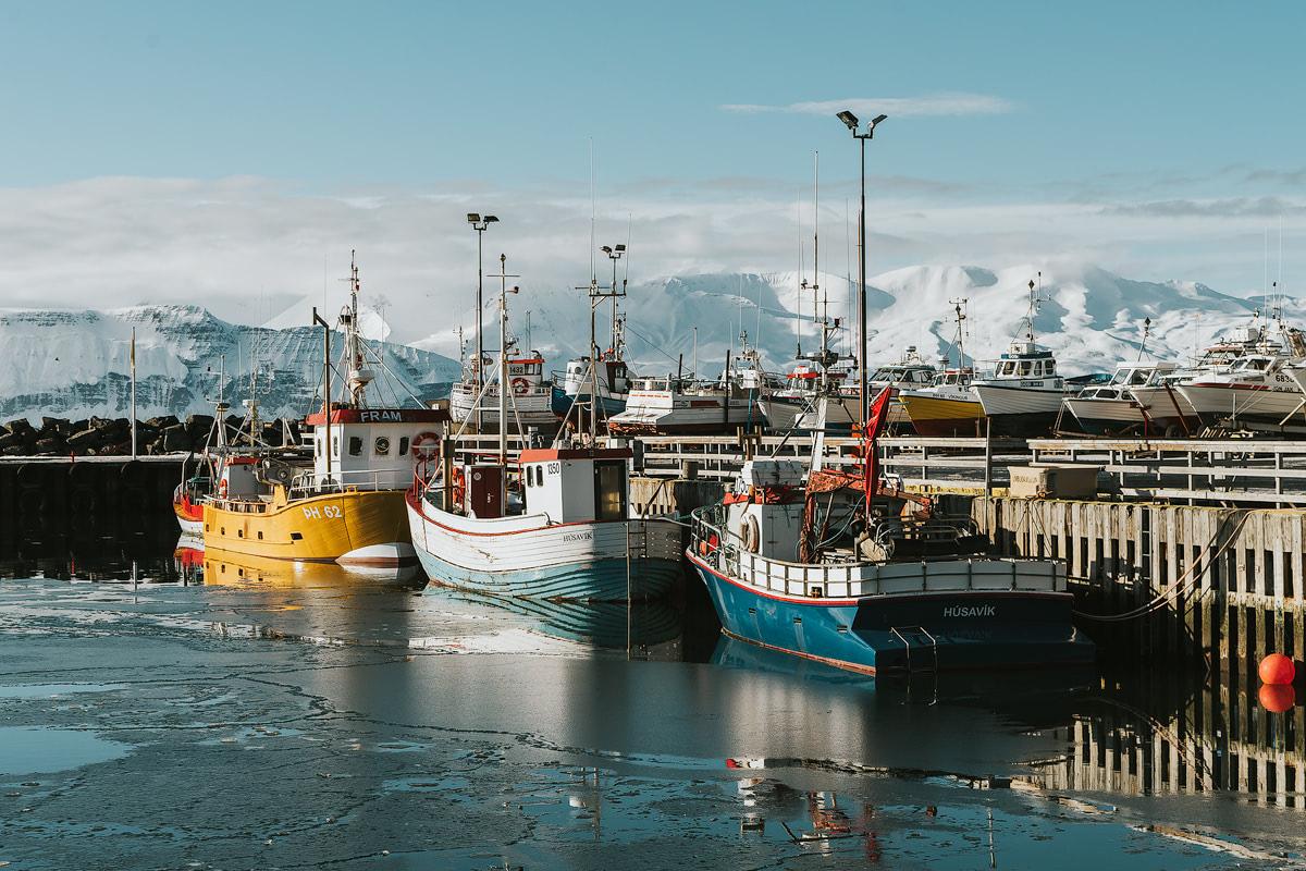 Iceland, Husavik - Renee Roaming