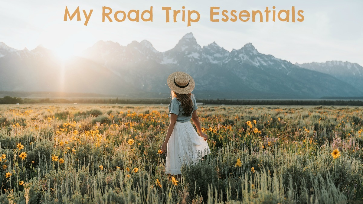 Road Trip Essentials Giveaway Renee Roaming