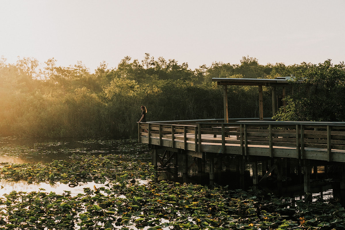 AMERICA'S NATIONAL PARKS – ALL 59 RANKED BEST TO WORST - EVERGLADES NATIONAL PARK
