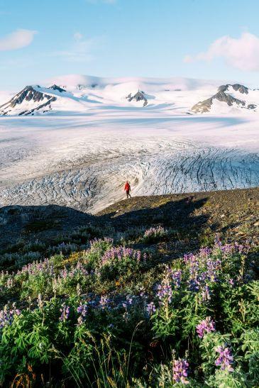 5-Epic-Alaska-Hiking-&-Backpacking-Adventures-Harding-Icefield5-ReneeRoaming