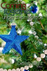 Coming Together Under The Mistletoe, a Charity Anthology
