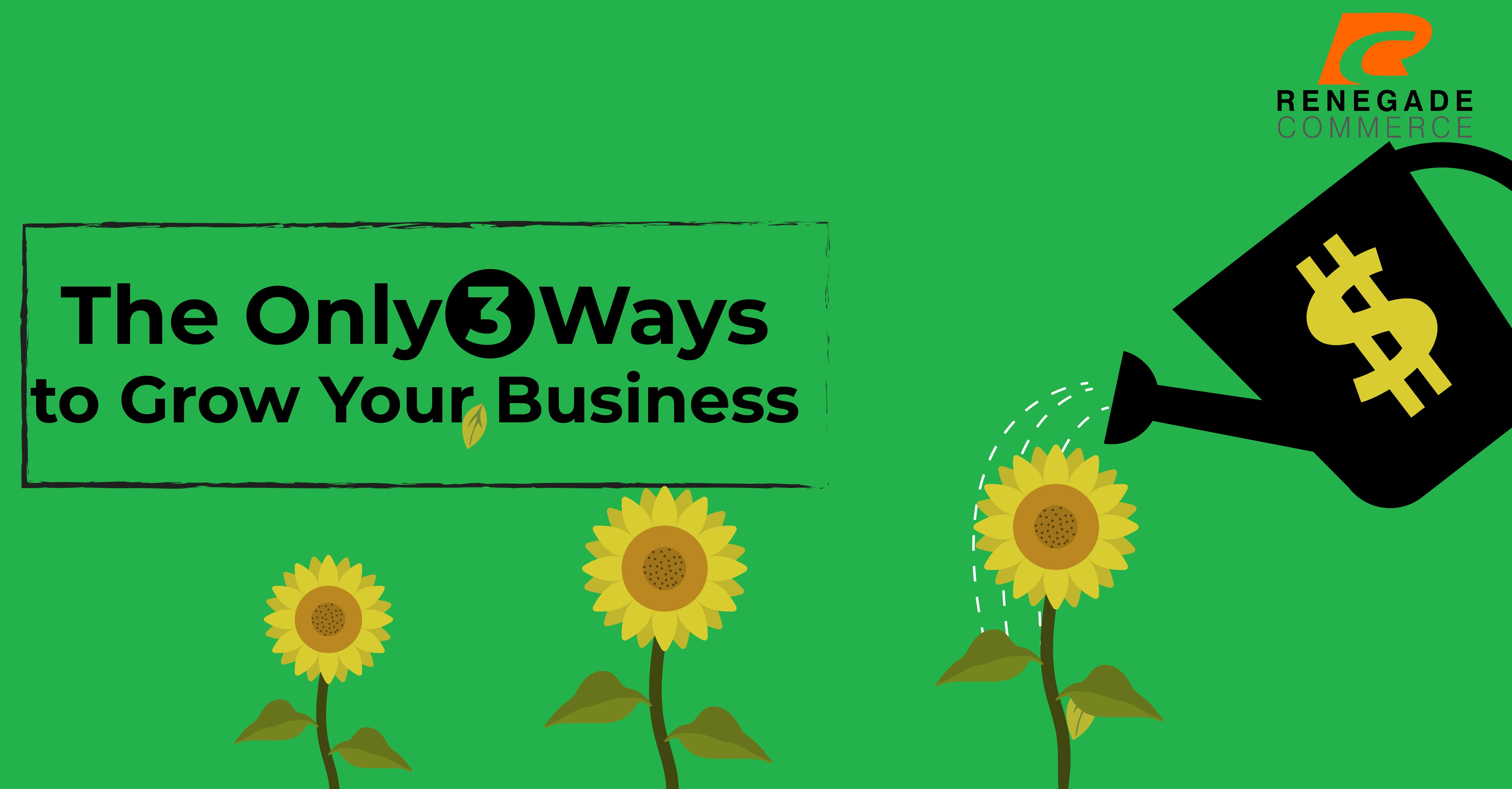 Here are the ONLY 3 Ways to Grow Your Business