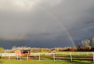 Rainbow of the main pasture