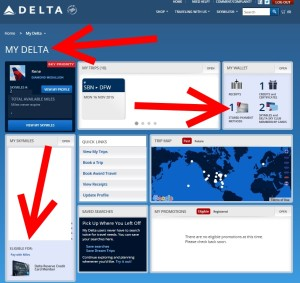 my only credit card in my delta is my delta amex reserve card renespoints blog