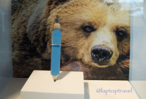 dsc_9189_bear-crayon-art-delta-skyclub-seattle