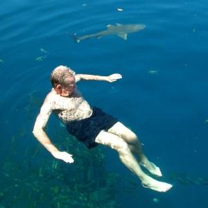 Solomon Islands & sharks