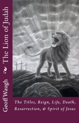 A 7 Lion