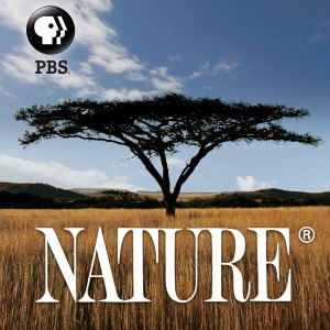 Nature Cancelled Or Renewed For Season 34?