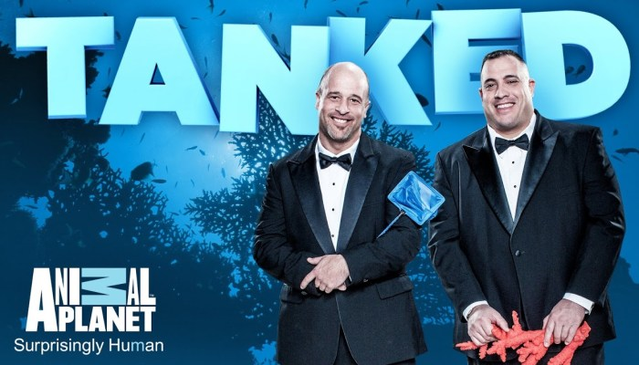 Is There Tanked Season 11? Cancelled Or Renewed?