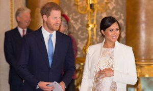 MEGHAN & HARRY: A ROYAL BABY STORY special on TLC