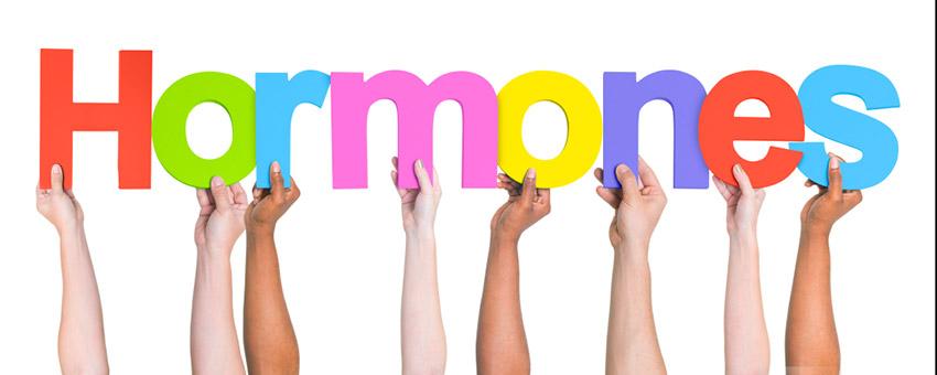 Hormone Functions
