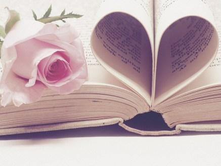 God's Promises, Reflection, Bible, PInk Flower
